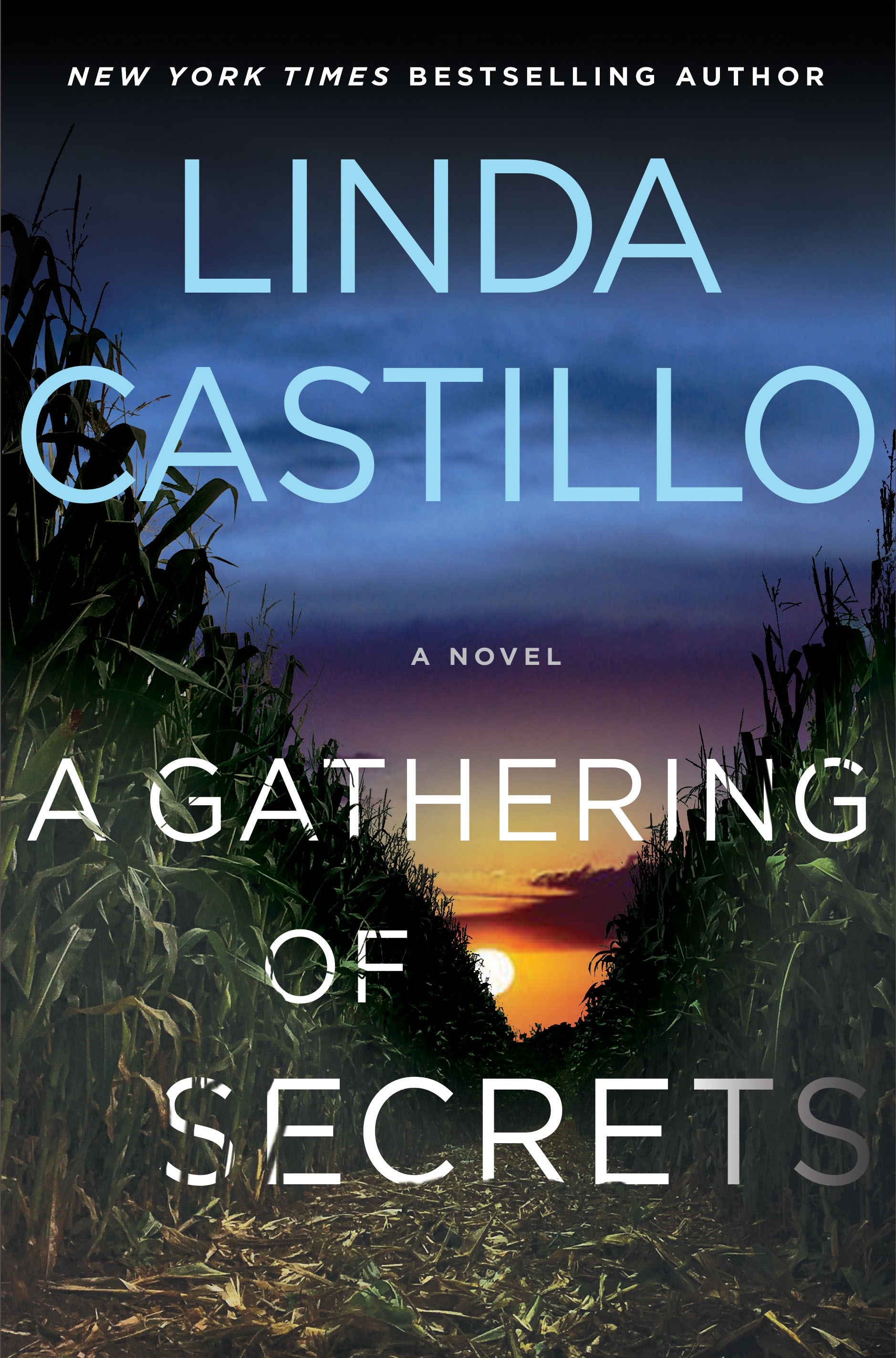 a gathering of secrets copy